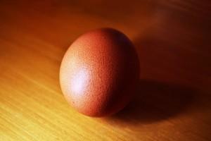Egg Meditaition